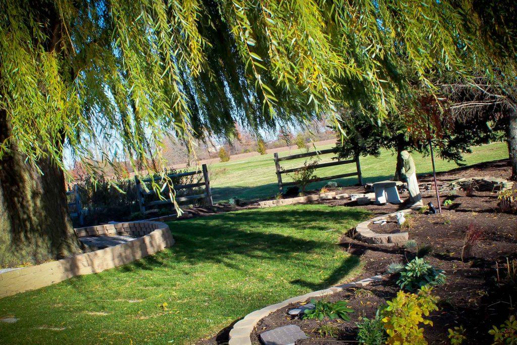 Karnik Memorial Garden - Willow Tree